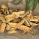 biomass-634x285-3