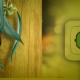 paragogi-ilektrikis-energias-apo-biomaza-3