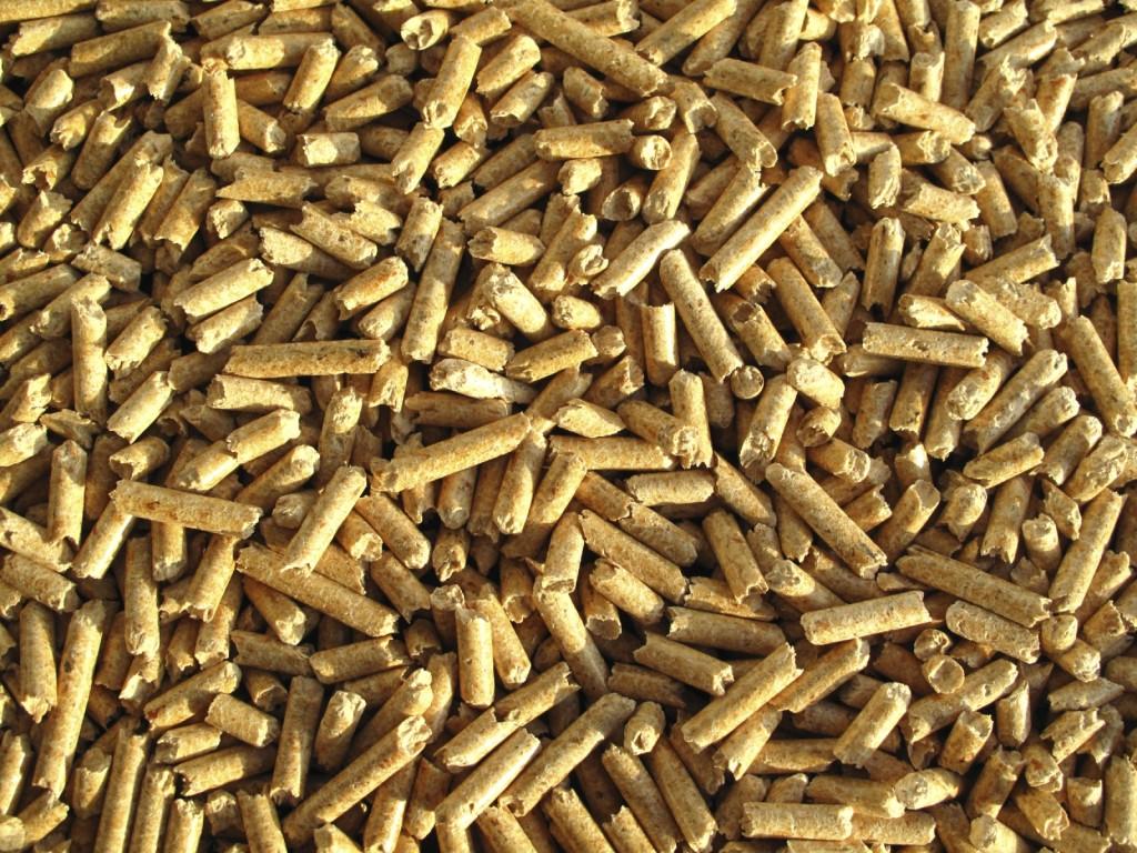 Biomass (2)