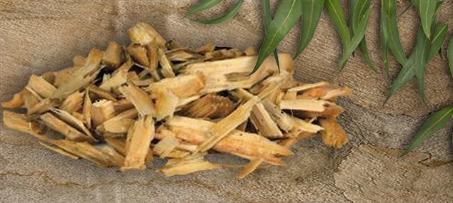 biomass 634x285---3